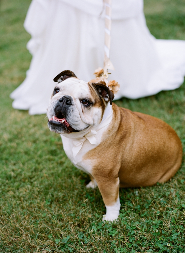 jessica-sloane-event-styling-and-design-and-austin-gros-photography-belle-meade-wedding_086